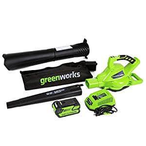 Greenworks Variable Speed Cordless Blower Vacuum
