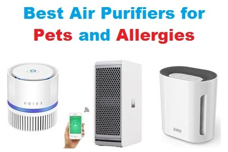 top 20 best air purifiers for pets and allergies in 2018. Black Bedroom Furniture Sets. Home Design Ideas