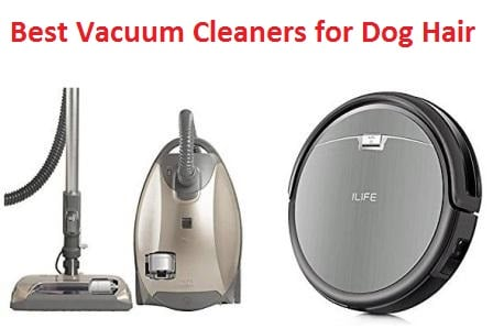 Best Vacuum Cleaner Dog Hair Carpet Carpet Vidalondon