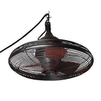 Allen + Roth 20 inches Valdosta Outdoor Ceiling Fan