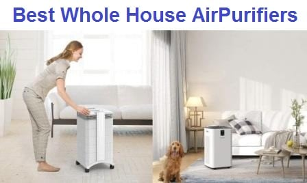 Top 15 Best Whole House AirPurifiers in 2019