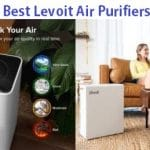 Top 9 Best Levoit Air Purifiers in 2019