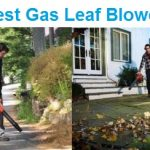 To 15 Best Gas Leaf Blowers in 2020