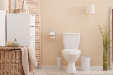 Top 10 Best Comfort Height Toilets in 2020 - Complete Guide