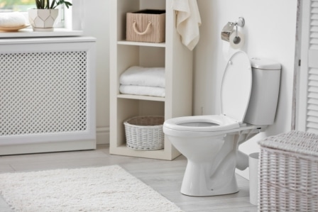 Top 10 Best Toto Toilets in 2020 - Complete Guide