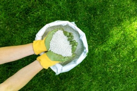 Top 15 Best Fertilizers for Grass in 2020