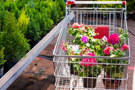 Top 15 Best Garden Carts in 2020