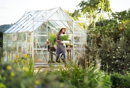 Top 15 Best Greenhouses in 2020