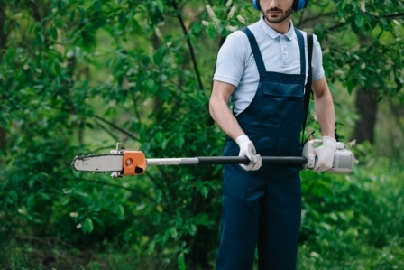 Top 15 Best Pole Saws in 2020 - Complete Guide