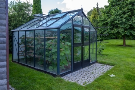 Top 15 Best Small Greenhouses in 2020