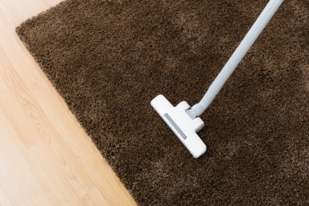 Top 15 Best Vacuums for Shag Carpets in 2020