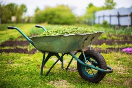 Top 15 Best Wheelbarrows in 2020