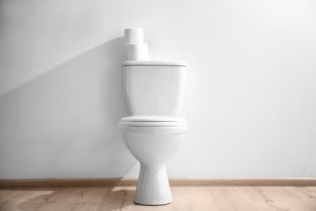 Top 5 Best 10-inch Rough-in Toilets in 2020 - Complete Guide