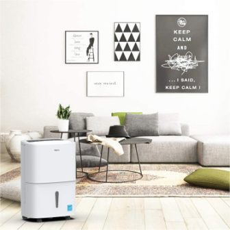 Top 15 Best Dehumidifiers with Pump in 2020