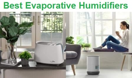 Top 15 Best Evaporative Humidifiers in 2020