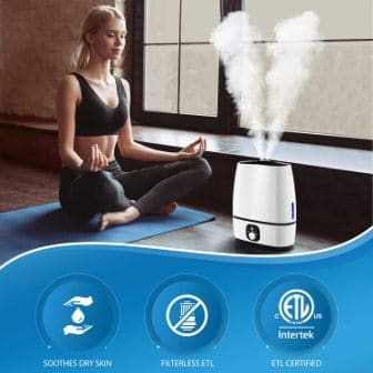 Top 15 Best Quiet Humidifiers in 2020