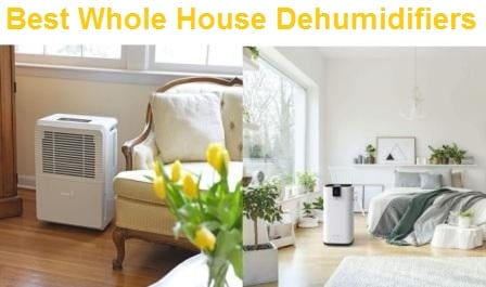 Top 15 Best Whole House Dehumidifiers in 2020