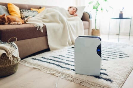 Top 15 Best Quiet Air Purifiers - Detailed Guide & Reviews 2020
