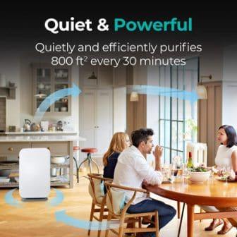 Top 15 Best Quiet Air Purifiers in 2020