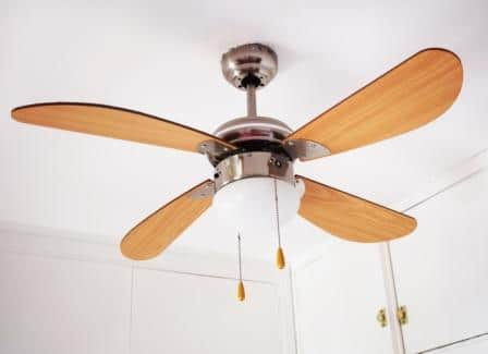 Top 15 Best Prominence Ceiling Fans Reviews - Guide & Reviews 2020